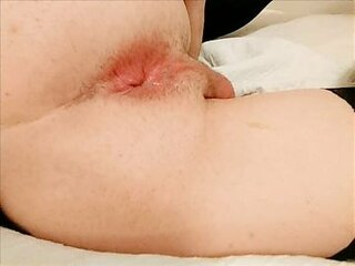 Videos from shemalespornvideos.com