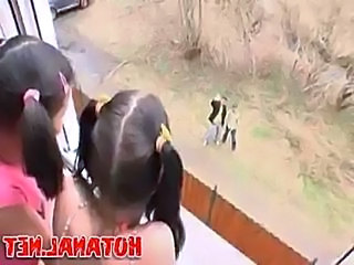 Two teen girls gets hard sex lession  free
