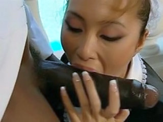 asian maid interracial CFNM BJ